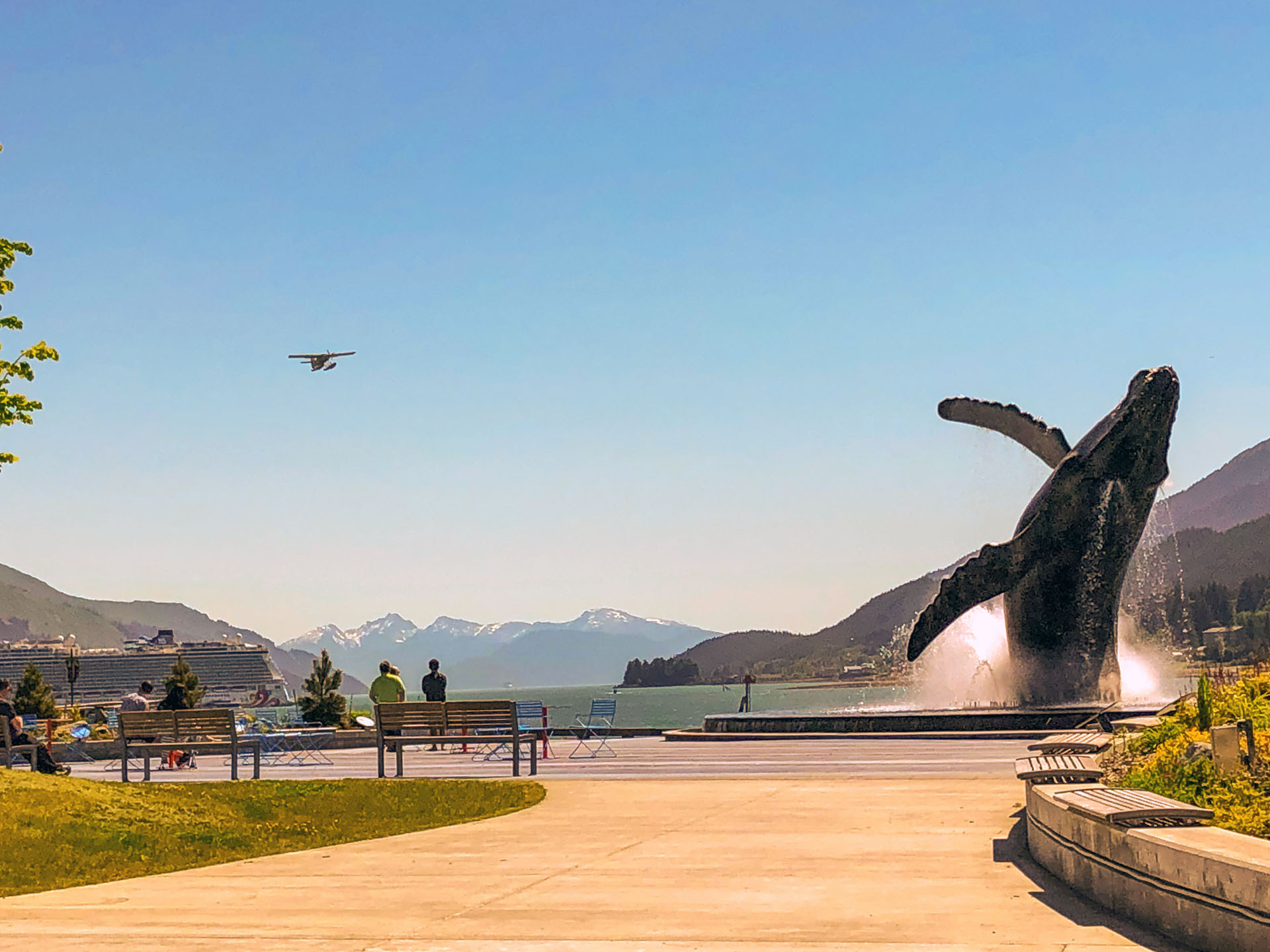 A picture containing sky, outdoor, grass, nature, life-size whale sculpture, fountain
